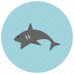animals, attack, dangerous, ocean, sea, shark, teeth icon