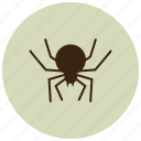 animals, black widow, bug, deadly, spider icon