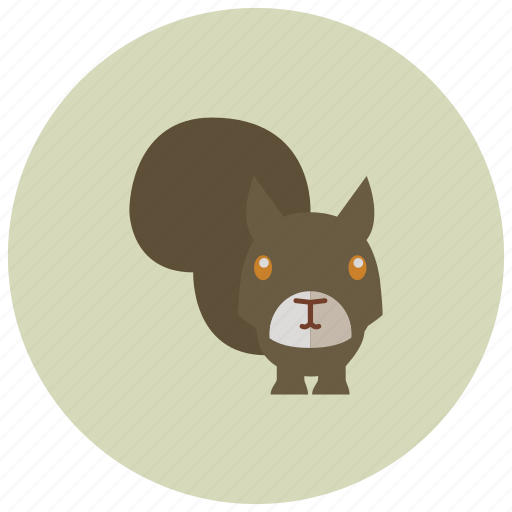 animals, park, squirrel, tail, tree icon