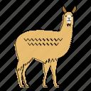 llama, animal, mammal, mountains, peru