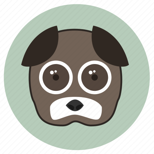 animals, big eyes, cute, dog, face, pets icon