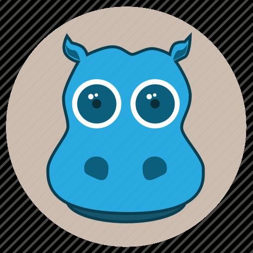 animals, big eyes, cute, face, hippopotamus, pets icon