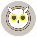 animals, big eyes, cute, face, night, owl icon