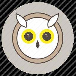 animals, big eyes, cute, face, night, owl icon
