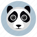 animals, big eyes, cute, face, panda, pets icon