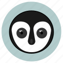 animals, big eyes, cute, face, huggable, penguino, pets icon