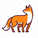animals, fox, wildlife, zoo