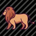 animals, lion, wildlife, zoo