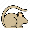 animal, mice, mouse, rat icon