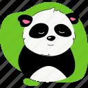 panda, wild, animal, zoo
