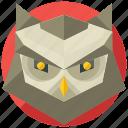 animal, animals, bird, night, owl icon