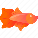 domestic, fish, orange, pink, wild icon