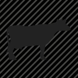 animal, cow, farm icon