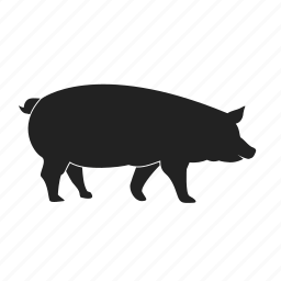 animal, pig, piggy icon