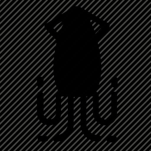 animal, squid icon