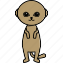 africa, animal, cute, jungle, meerkat, nature, zoo icon