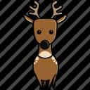 animal, cute, deer, jungle, nature, reindeer, zoo