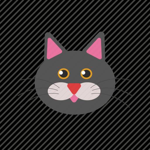 animal, cat, icon icon