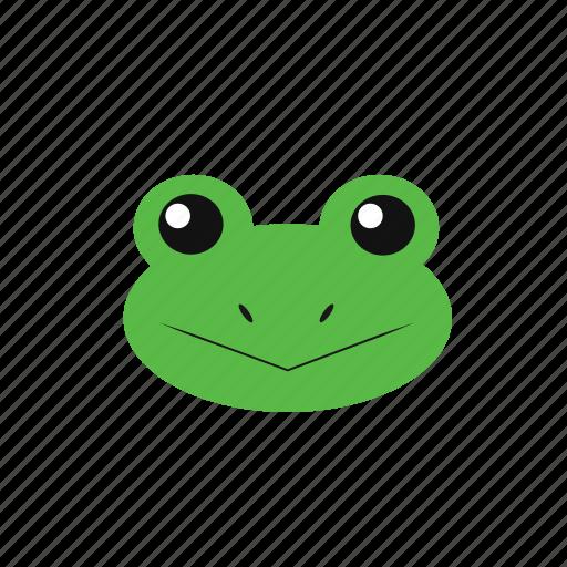 animal, frog, icon icon