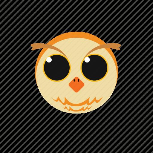 animal, icon, owl icon
