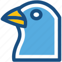 bird, columbidae, dove, pigeon, pigeon face