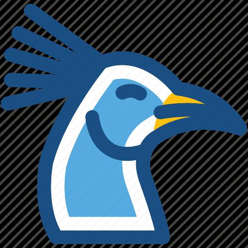 bird, peacock, peafowl, peahen, zoo icon