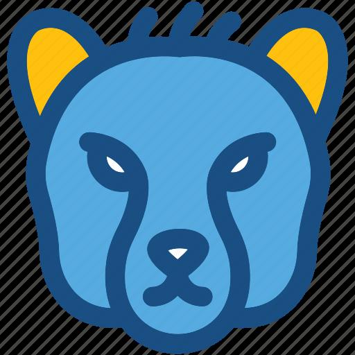 animal, bear, mammal, wild animal, zoo icon
