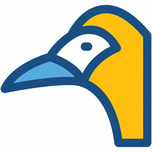 bird, parrot, pet, psittacines, zoo icon