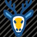 animal, deer, elk, reindeer, reindeer head