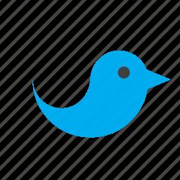 animal, bird, blue icon