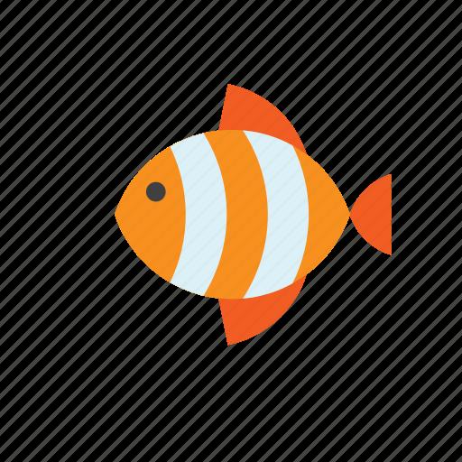 Animal, fish icon - Download on Iconfinder on Iconfinder