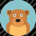 animal, bear, carnivorous, circus, huge, mammal, wild icon