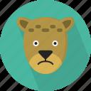 animal, carnivore, cheetah, mammal, nature, wild, wildlife icon