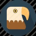 bird, eagle, eyesight, fast, large, powerful, predator icon