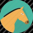 animal, domesticated, grass, graze, horse, mammal, odd-toed ungulate icon