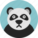 bear, big, carnivorous, cat-foot, mammal, panda, wildlife icon
