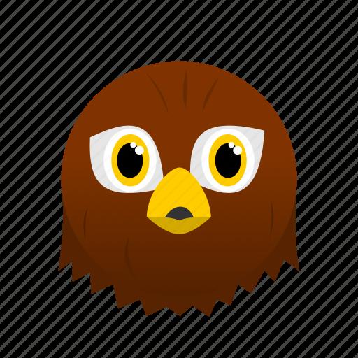 Animal, bird, brown, eagle, face, wild icon - Download on Iconfinder