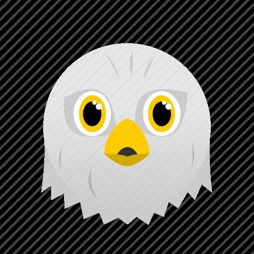 Animal, bird, eagle, face, white, wild icon - Download on Iconfinder