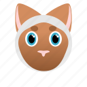 animal, cat, domestic, face, hunter, pet icon