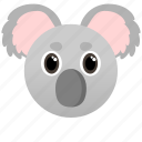 animal, cute, face, koala, wild, zoo