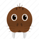 animal, brown, walrus, wild icon