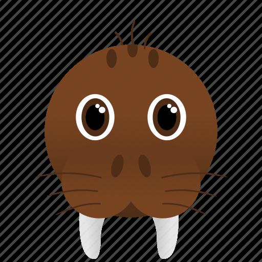 animal, brown, walrus, wild icon