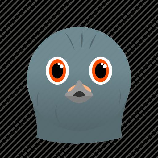 animal, bird, dove, face, gray icon