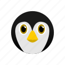 animal, arctic, artic, penguin, white icon