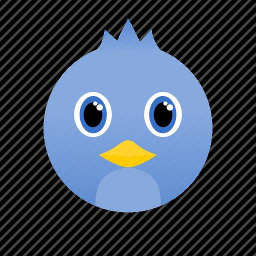 Blue, wild, bird, animal, face icon - Download on Iconfinder