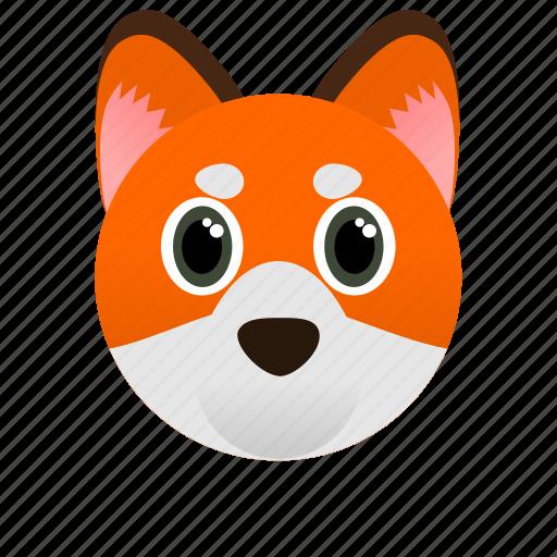 animal, face, fox, orange, wild icon