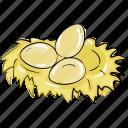 bird's eggs, bird's nest, brood, eggs, nest icon