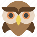 animals, bird, education, halloween, nature, owl, wisdom icon