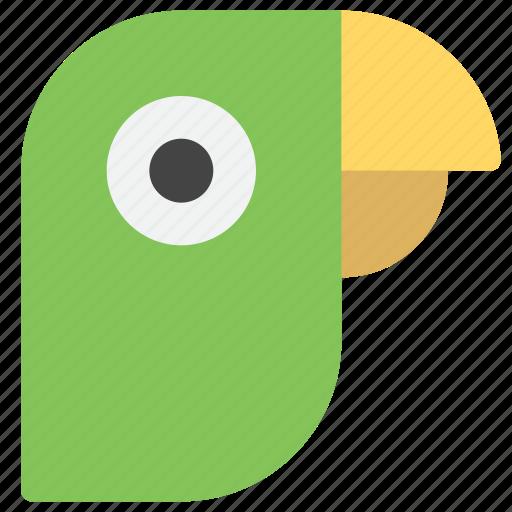 animal, animals, bird, emoticons, nature, parrot, smiley icon