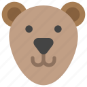 animals, bear, face, nature, teddy icon
